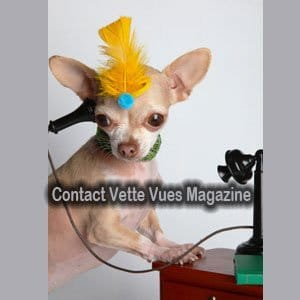 Vette Vues Magazine Contact Information