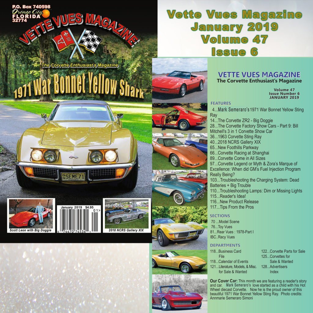 January 2019 Vette Vues Magazine